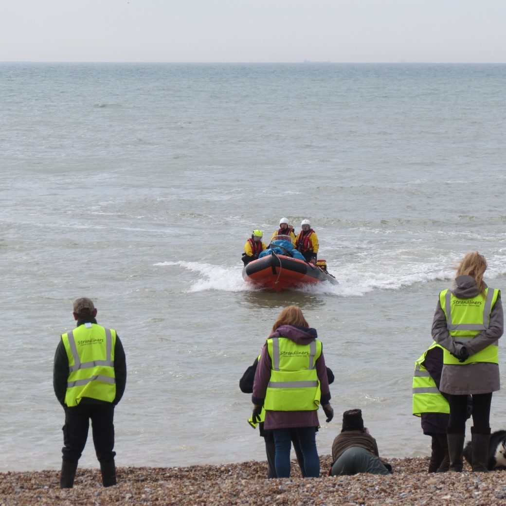 plenty of volunteers came along to help clean the beach