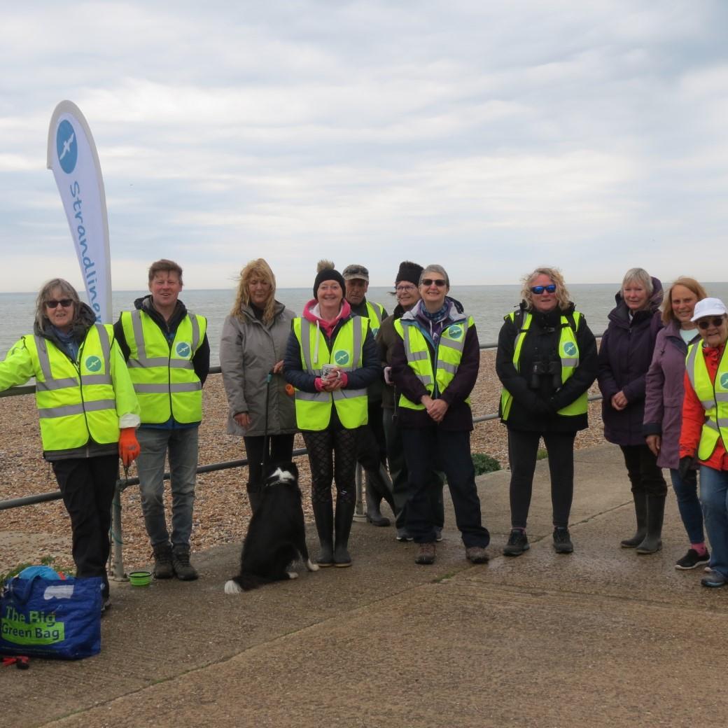 beach cleanup 2020